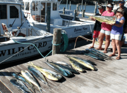 Affordable deep sea offshore fishing for the entire family.