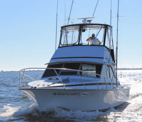 Photos Of Our Wild Card Charters Sportfishing Boat