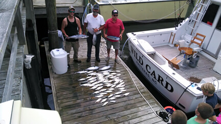 A near shore charter for these three friends proved successful with a bunch of good eating Spanish mackerel on their half day trip while vacationing in Kill Devil Hills NC.