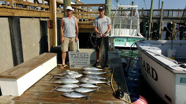 These vacationers staying in Manteo NC caught several blackfin tuna