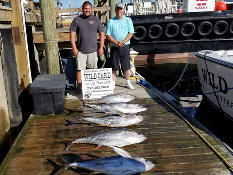 Early season catch of five big tuna during an offshore charter out of Oregon Inlet for anglers vacationing in Nags Head NC.